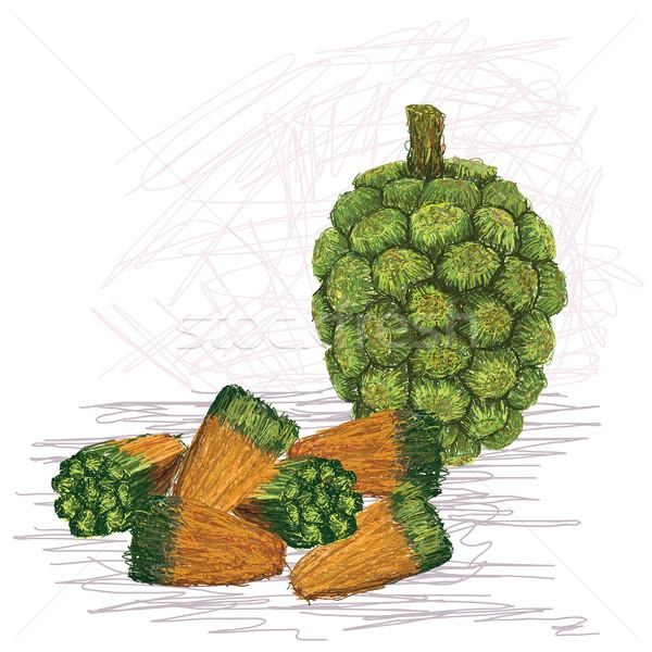 pandanus fruit kernels Stock photo © jomaplaon