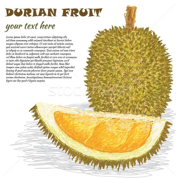 Frutas primer plano ilustración maduro todo mitad Foto stock © jomaplaon