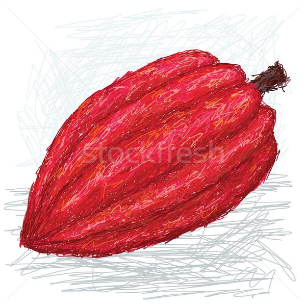 Kakao örnek meyve bilimsel Stok fotoğraf © jomaplaon