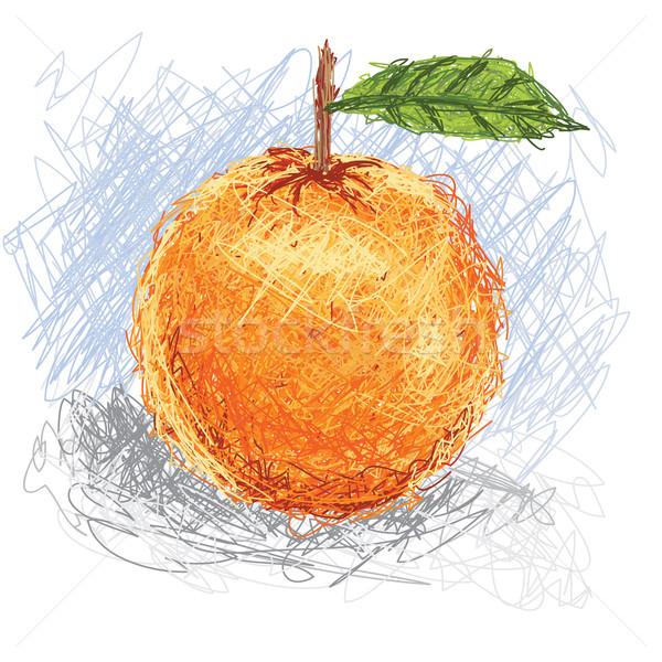 Naranja primer plano ilustración frescos de frutas de naranja frutas Foto stock © jomaplaon