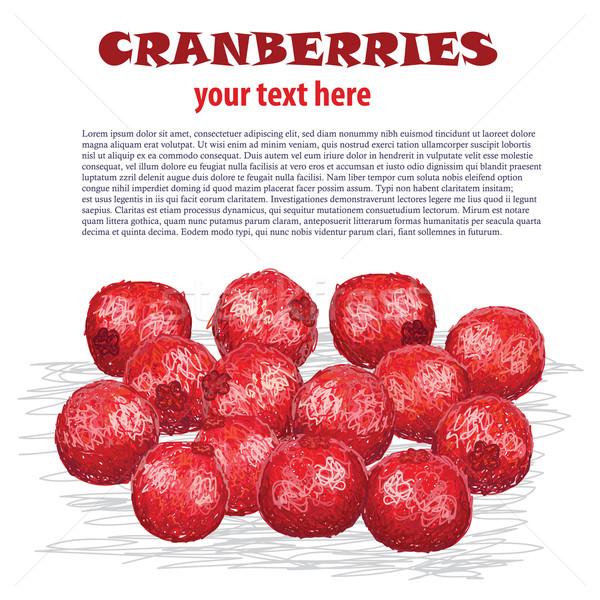 cranberries Stock photo © jomaplaon