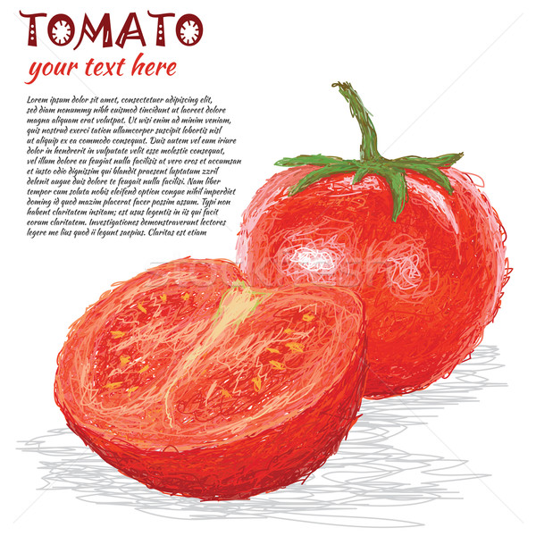 Tomate frutas primer plano ilustración frescos vegetales Foto stock © jomaplaon