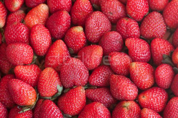 çilek bahar gıda yaprak meyve bahçe Stok fotoğraf © jomphong