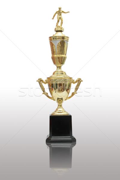 Kazananlar fincan spor Metal palmiye tıp Stok fotoğraf © jomphong
