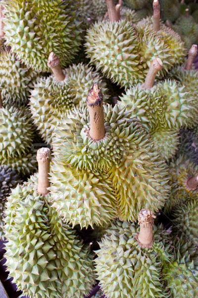 The queen of Thai fruit is DURIAN Stock photo © jomphong