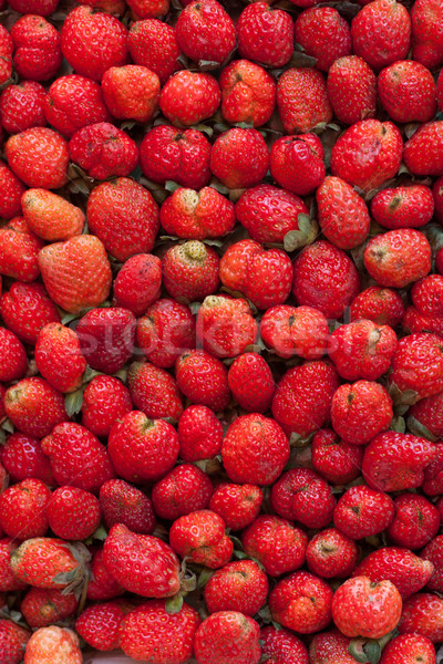 strawberry ., use for background Stock photo © jomphong