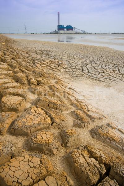 Secar Tailândia sol abstrato natureza fundo Foto stock © jomphong