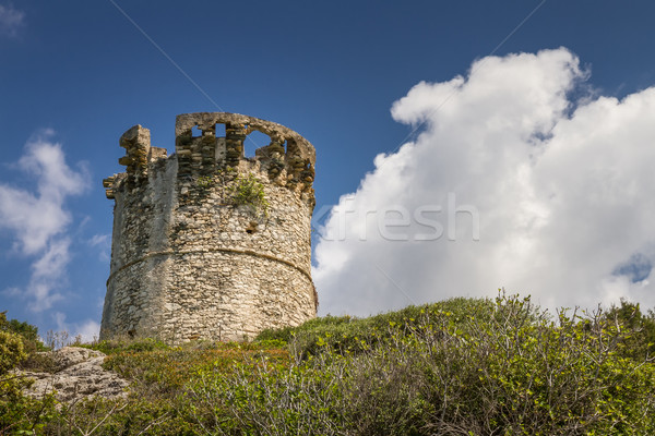 Genoese tower at Farinole on Cap Corse in Corsica Stock photo © Joningall