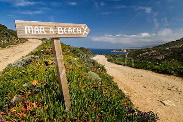 útjelző tábla mutat tengerpart LA Korzika fa Stock fotó © Joningall