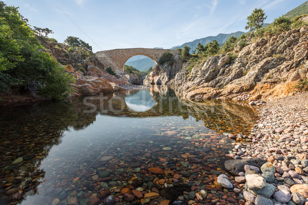 Ponte Vecchiu bridge over Fango river in Corsica Stock photo © Joningall