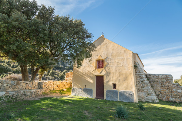 Dame la chapelle corse olivier région Photo stock © Joningall