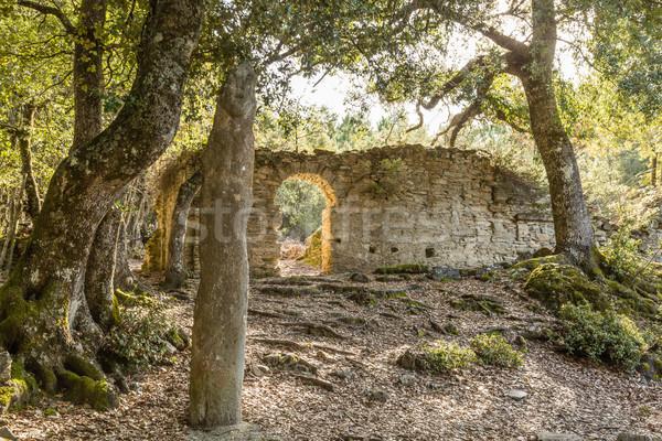 Kő Korzika ősi központi épület nap Stock fotó © Joningall