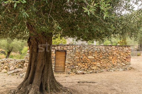 Village pierre bâtiments corse maisons vallée Photo stock © Joningall