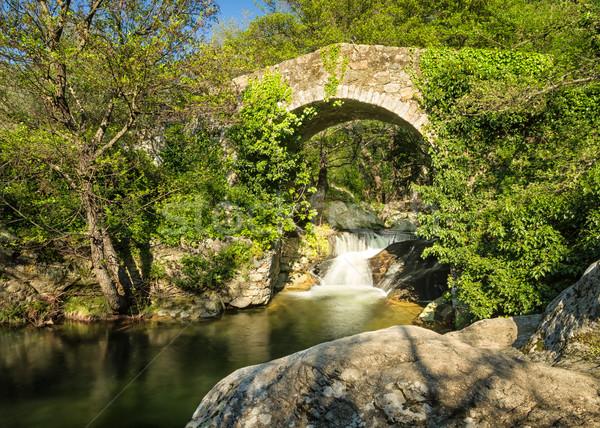 橋 カスケード コルシカ島 古代 ストリーム 地域 ストックフォト © Joningall