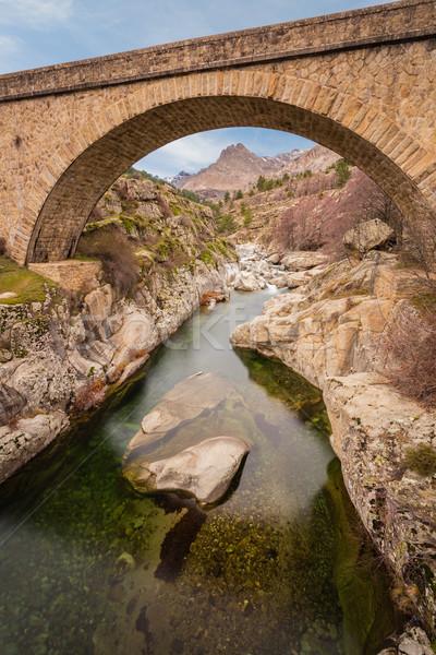 моста реке расстояние центральный Корсика небе Сток-фото © Joningall