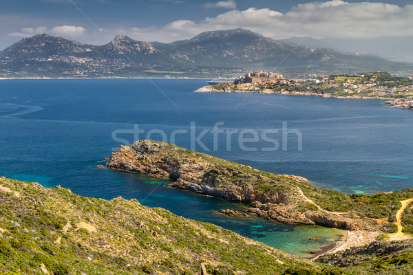 the citadel of Calvi with a deserted beach and turquiose sea Stock photo © Joningall