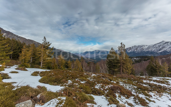 View east from Col de Vergio in Corsica Stock photo © Joningall