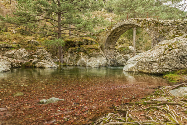 Genoese bridge over the Tartagine river near Mausoleo in norther Stock photo © Joningall