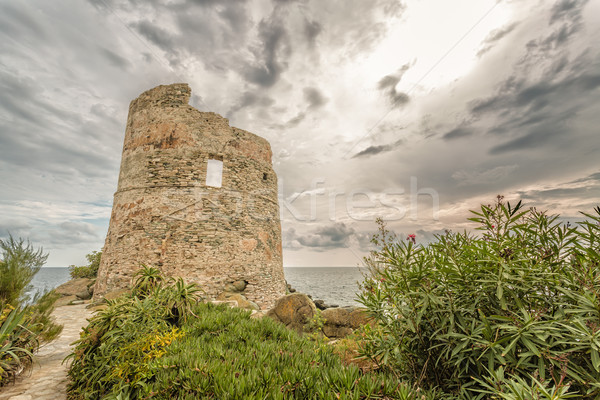 Genoese tower at Erbalunga On Cap Corse in Corsica Stock photo © Joningall