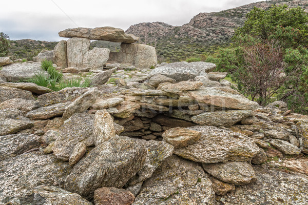 Dolmen at Revincu in Corsica Stock photo © Joningall