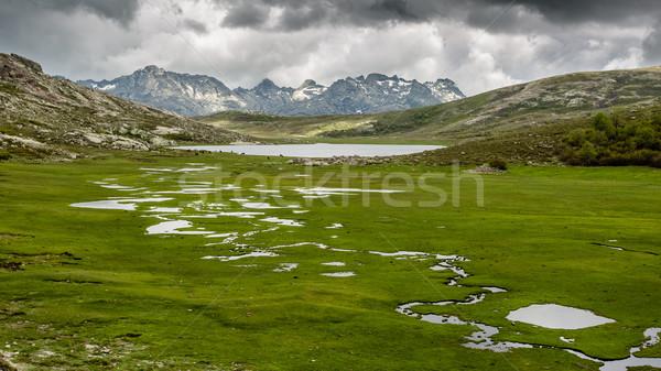 コルシカ島 山 表示 ストリーム 緑 フォアグラウンド ストックフォト © Joningall