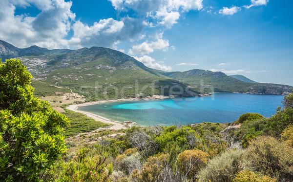 Baie de Nichiareto on west coast of Corsica Stock photo © Joningall