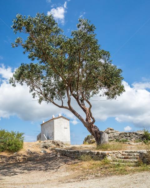 Ház domb Korzika út fa otthon Stock fotó © Joningall