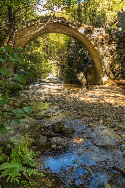 Ponte Sottano bridge near Corscia in Corsica Stock photo © Joningall