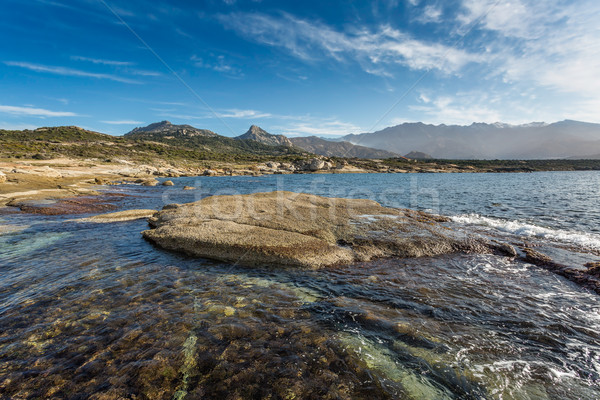 Corsican coastline and mountains at Punta Caldanu near Lumio Stock photo © Joningall