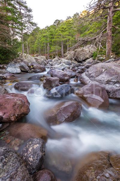 Сток-фото: быстро · реке · Корсика · замедлять · затвор