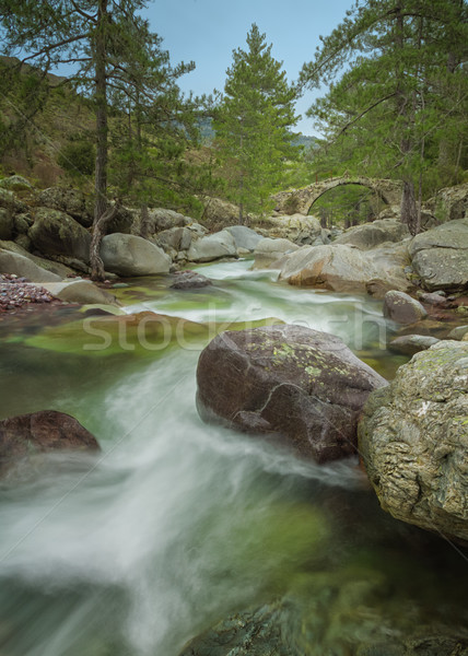 The Tartagine river and Genoese bridge in northern Corsica Stock photo © Joningall
