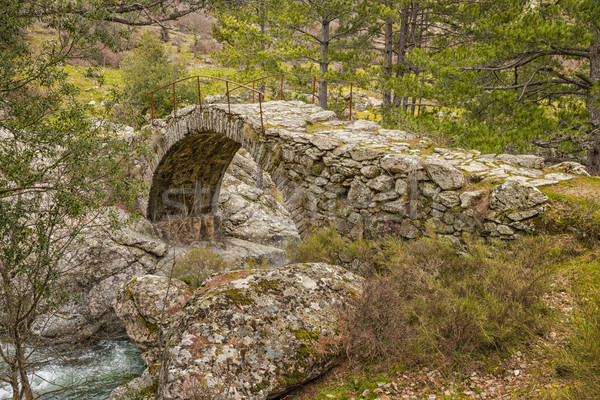 Ancient Genoese bridge over Tartagine river in northern Corsica Stock photo © Joningall