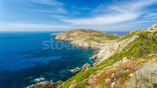 ラ コルシカ島 地域 空 花 春 ストックフォト © Joningall