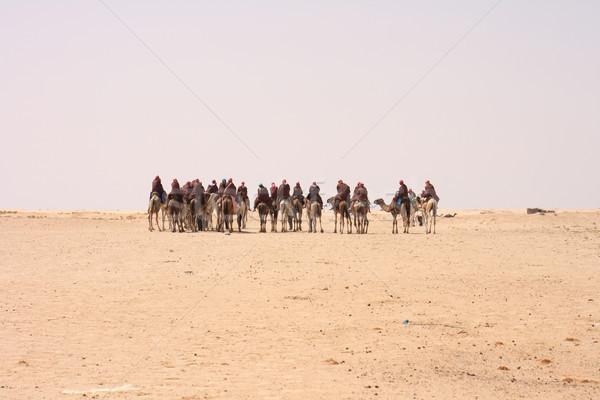 キャラバン ラクダ サハラ砂漠 砂漠 チュニジア 空 ストックフォト © jonnysek