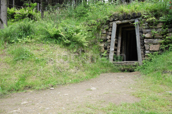 old mine entry Stock photo © jonnysek