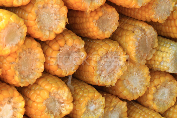 sweet corn background Stock photo © jonnysek