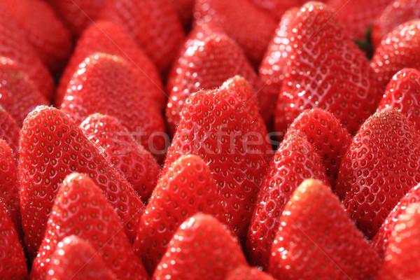 Taze kırmızı frenk üzümü güzel meyve doğa Stok fotoğraf © jonnysek