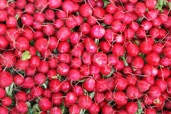 свежие редис редис Nice растительное саду Сток-фото © jonnysek