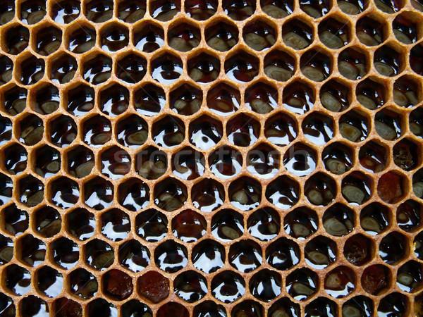 Bee воск меда текстуры природного продовольствие Сток-фото © jonnysek