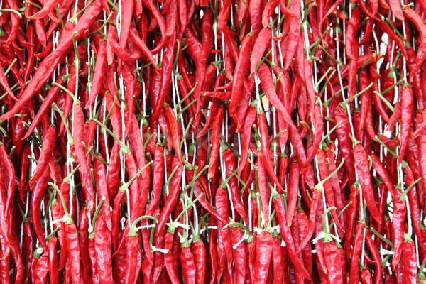 chili background Stock photo © jonnysek
