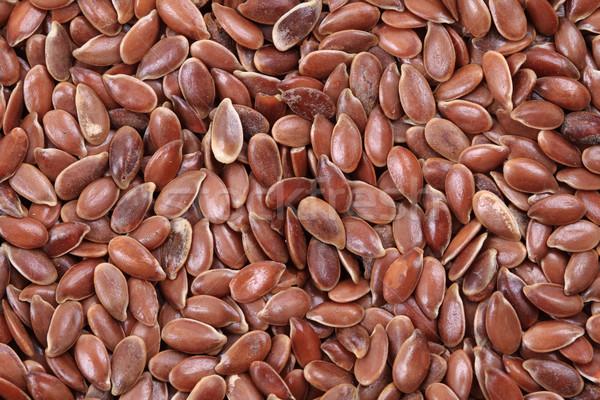 flax seed texture Stock photo © jonnysek
