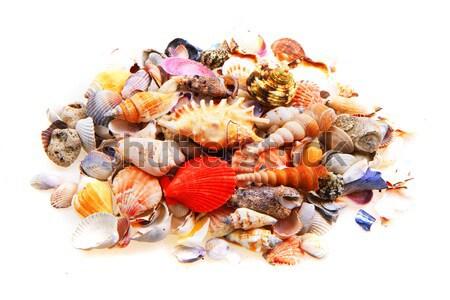 Kleur mineralen edelstenen collectie geïsoleerd witte Stockfoto © jonnysek