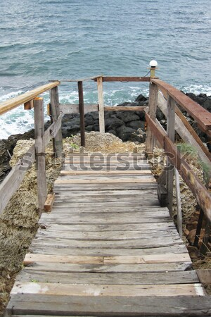 old wooden end of coast  Stock photo © jonnysek