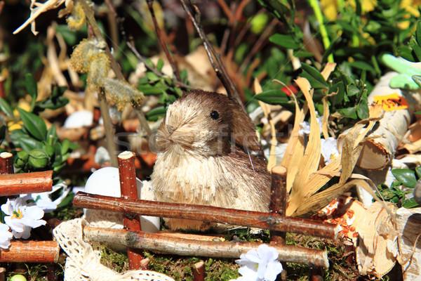 Paskalya küçük tavşan bahar doğa çiçek Stok fotoğraf © jonnysek