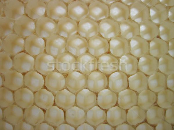 Textura mel vazio bom abelha comida Foto stock © jonnysek