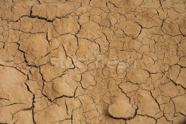 Száraz textúra természetes barna föld homok Stock fotó © jonnysek