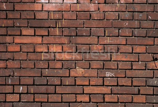 brickwall Stock photo © jonnysek