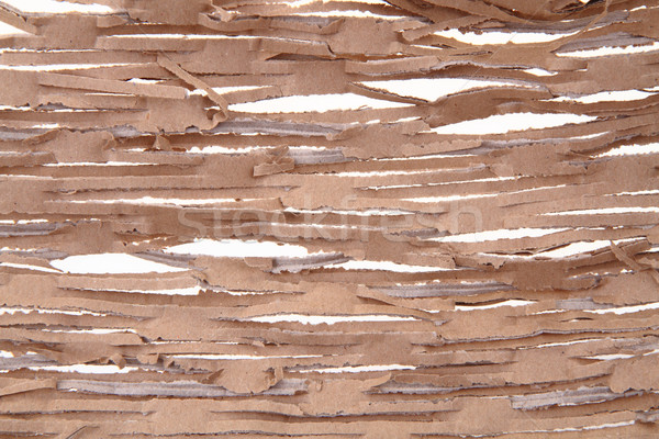 Carta marrone texture nice abstract sfondo frame Foto d'archivio © jonnysek