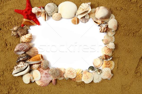 sand frame with the shells  Stock photo © jonnysek