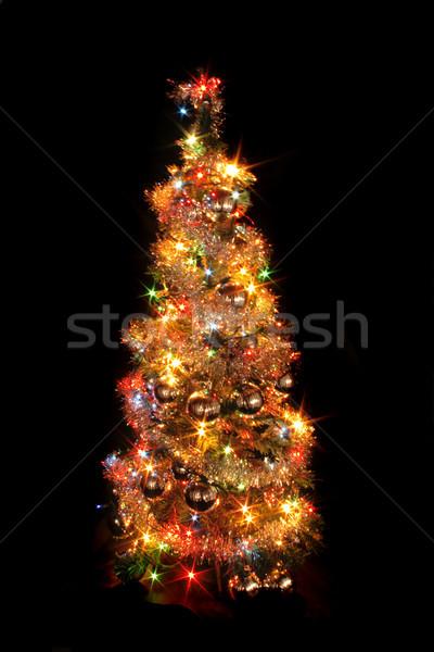 Noël arbre isolé noir forêt design Photo stock © jonnysek